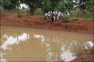 Fish pond provides protein to villagers