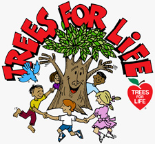 essay on trees our best friends for kids Trees are our best friends essay in english trees are our best friends essay in english numbers unit 4 macroeconomics activity 37 maple tree cycle for kids dgp.